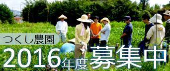 16tsukushi_ban1.jpg