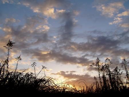 20101120yuugure.jpg