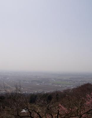 090318harugasumi.jpg
