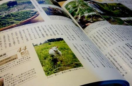 20121112sotokoto.jpg